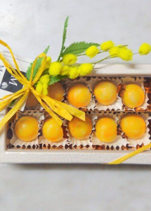 PRALINE MIMOSA FESTA della DONNA in cioccolato makò delizia a limone e gianduia